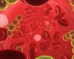 Кръв в спермата (еякулата)